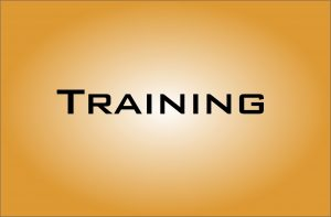 learn to digitize training